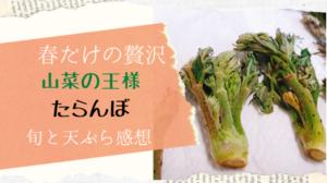 たらんぼの美味しい食べ方