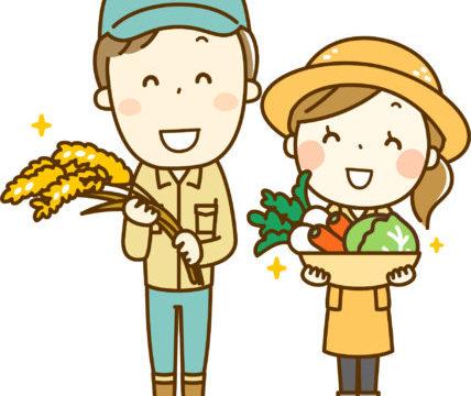 北海道でお米はいつから作られた?美味しい北海道米になるまでの歴史を簡単まとめ