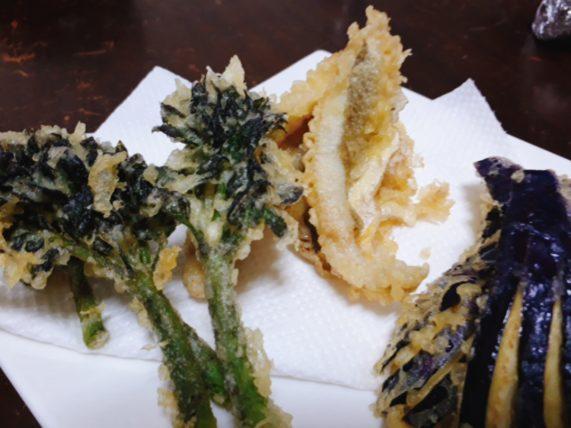 【こまい(氷下魚)の美味しい食べ方】一夜干し・天ぷらも美味しい!下処理はハサミで簡単