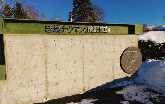 北海道の中華まんじゅうってどんなもの?忠類道の駅の『ナウマン饅頭』も美味しいよ!