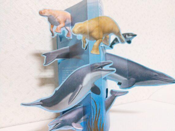 十勝で太古の歴史ロマンに触れる足寄動物化石博物館はパンフレットも素敵!お得情報や感想まとめ