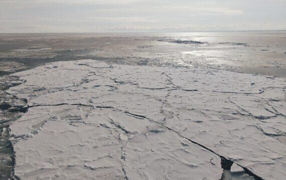 冬の網走で観光砕氷船おーろらに乗って流氷を見た感想まとめ!オジロワシも見られたり流氷なおやつを満喫した話