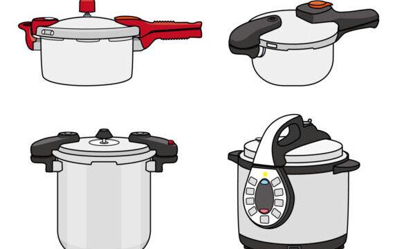ウグイを圧力鍋で炊けば小骨が気にならない!焼いたり炊飯器で炊いたりした私の結論